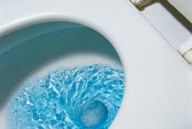7 Tips to Reduce Clogs in Your Low Flush Toilet
